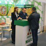 Нові гібриди кукурудзи презентувала Компанія Маїс